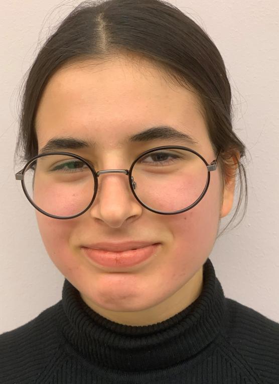 Idrott, fritid ochm miljön blir lite bättre om Ayshin Imanpour kommer in i ungdomsfullmäktige, hoppas hon.